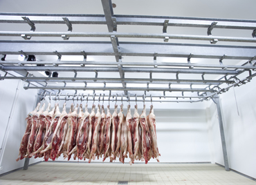 como-se-conforman-las-camaras-de-refrigeracion-paneles